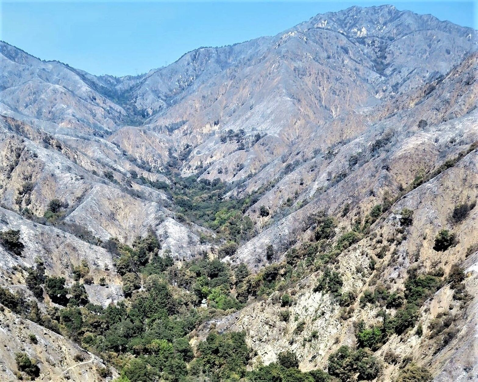 Big Santa Anita Canyon after the Bobcat Fire 2020